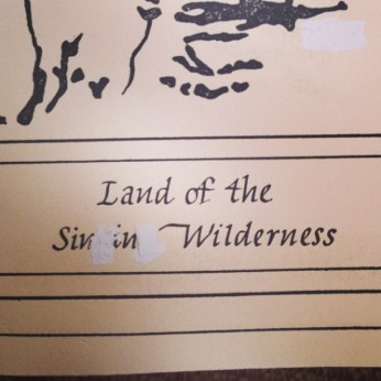 The Sin in Wilderness
