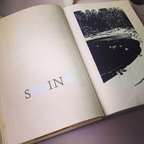 sin-book
